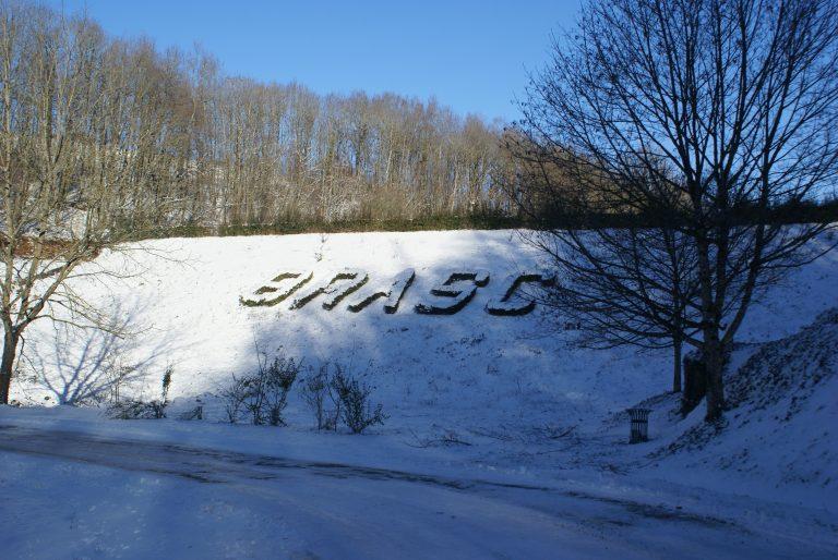 Brasc sous la neige